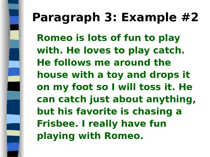Paragraph 3: Example #2 Romeo is lots of fun to play with. He loves to play