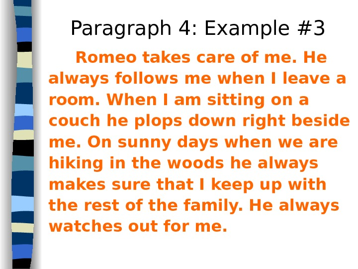 Paragraph 4: Example #3 Romeo takes care of me. He always follows me when I leave
