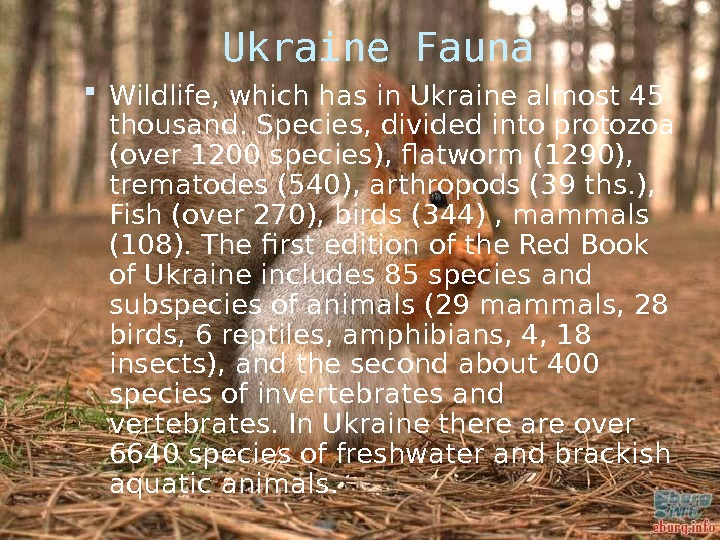 Ukraine Fauna Wildlife, which has in Ukraine almost 45 thousand. Species, divided into protozoa (over 1200