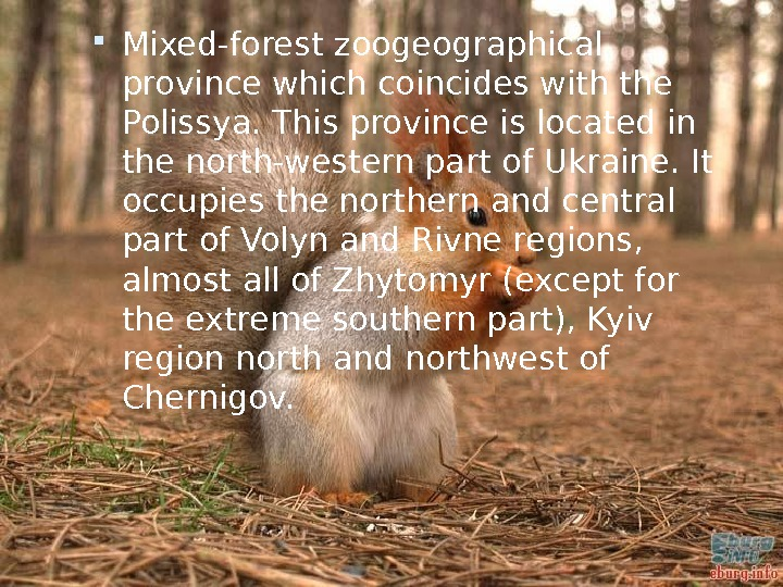 Mixed-forest zoogeographical province which coincides with the Polissya. This province is located in the north-western