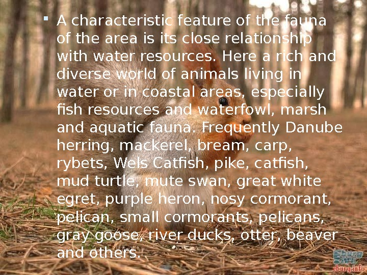 A characteristic feature of the fauna of the area is its close relationship with water