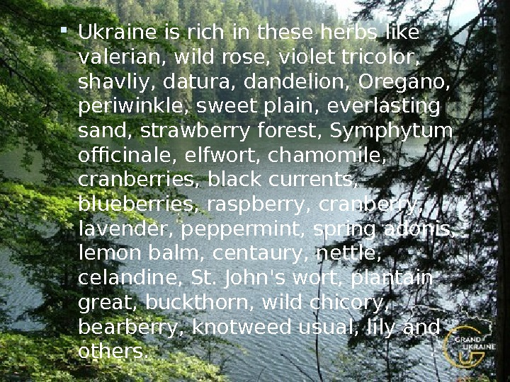 Ukraine is rich in these herbs like valerian, wild rose, violet tricolor,  shavliy, datura,
