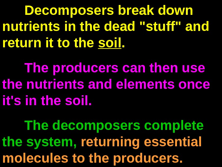 Decomposers break down nutrients in the dead stuff and return it to the soil.  The
