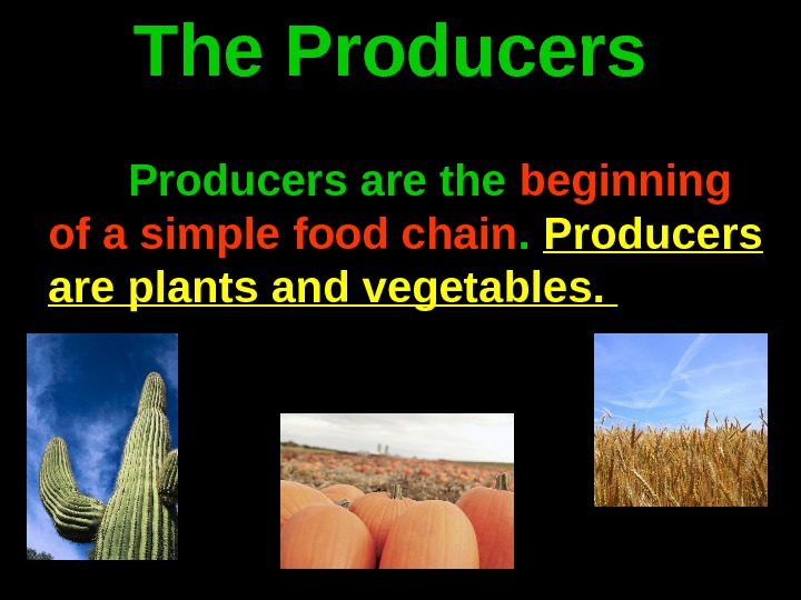 The Producers are the beginning of a simple food chain.  Producers are plants and vegetables.