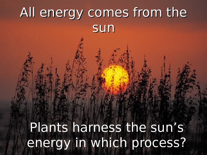 All energy comes from the sunsun Plants harness the sun's energy in which process?