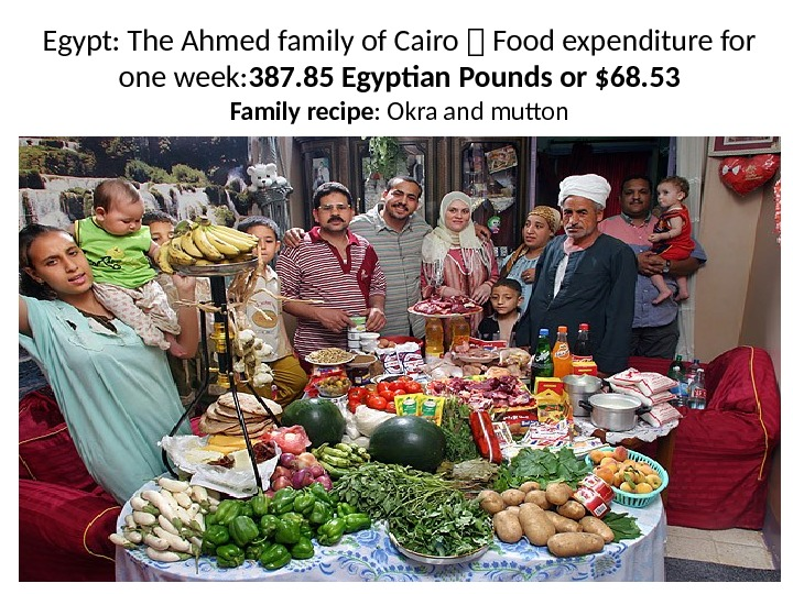 Egypt: The Ahmed family of Cairo 1 Food expenditure for one week: 387. 85 Egyptian Pounds