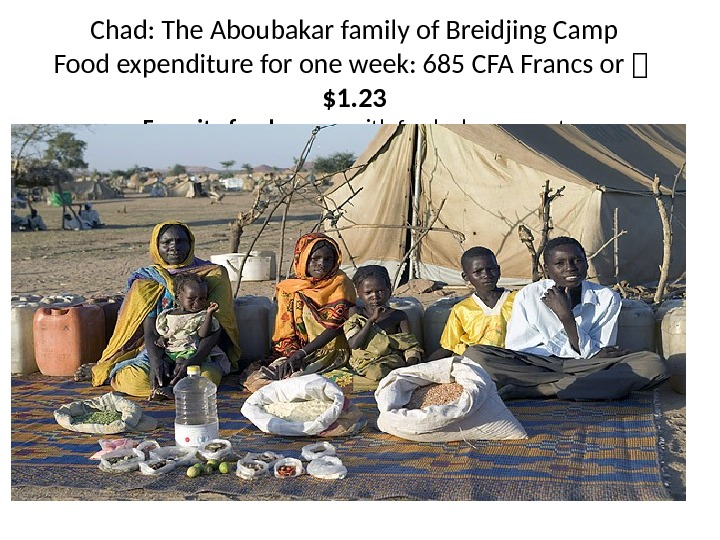 Chad: The Aboubakar family of Breidjing Camp Food expenditure for one week: 685 CFA Francs or