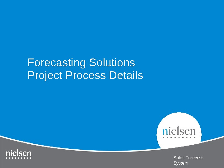 Forecasting Solutions Project Process Details Sales Forecast System
