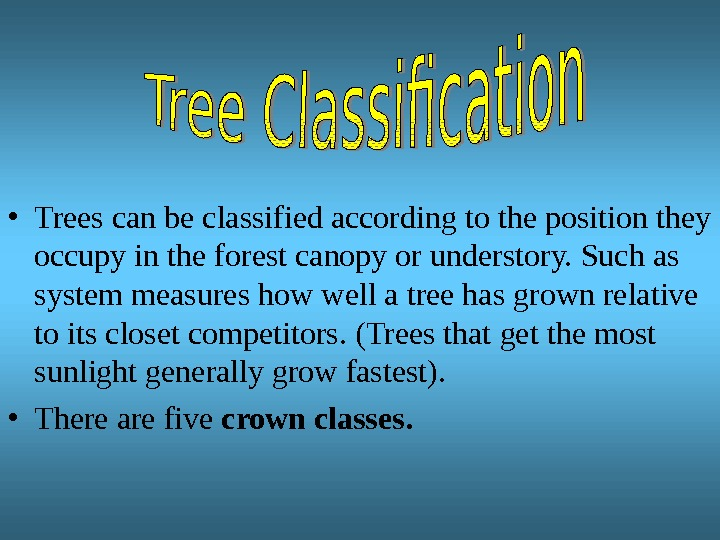 • Trees can be classified according to the position they occupy in the forest canopy
