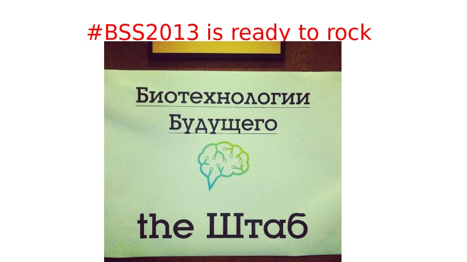 #BSS 2013 is ready to rock