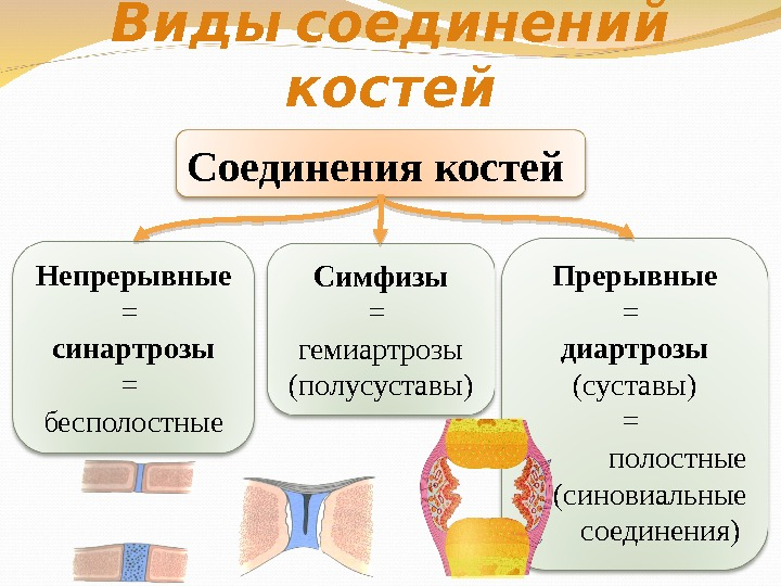 Суставы непрерывные и прерывные лфк при вывехе голеностопного сустава