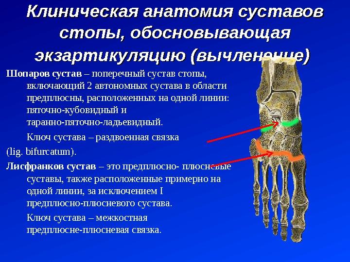 замена сустава в боткинской больнице