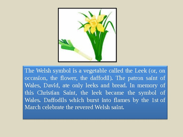 The Welsh symbol is a vegetable called the Leek (or,  on occasion,  the flower,