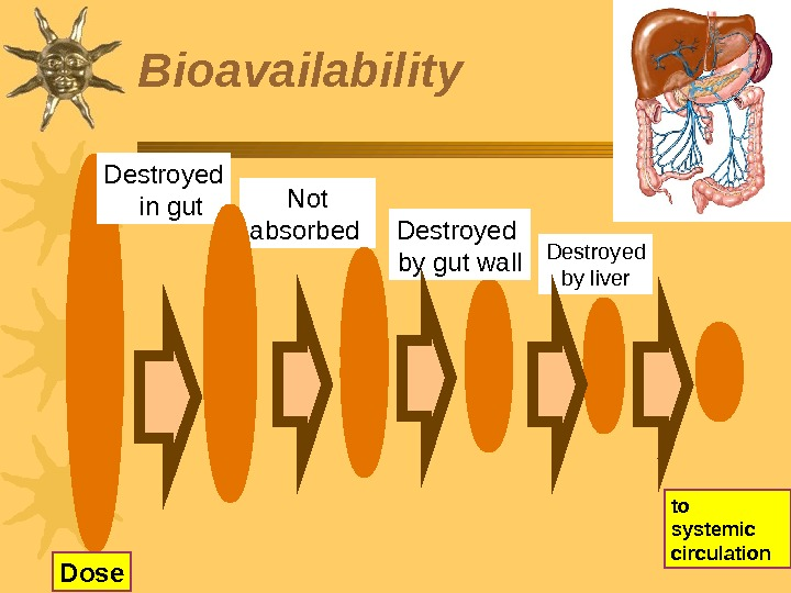 Bioavailability Not absorbed  Destroyed by gut wall to systemic circulation. Destroyed by liver Dose Destroyed
