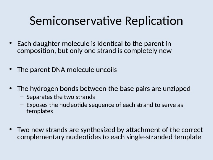 Semiconservative Replication • Each daughter molecule is identical to the parent in composition, but only one