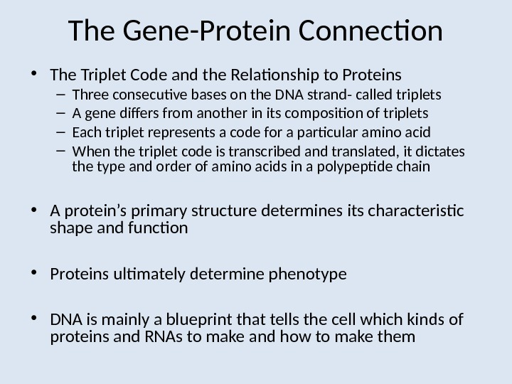 The Gene-Protein Connection • The Triplet Code and the Relationship to Proteins – Three consecutive bases