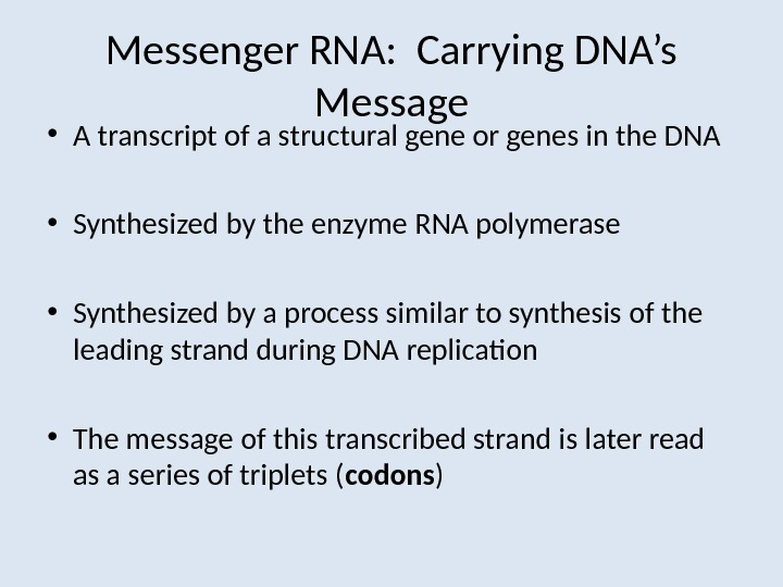 Messenger RNA:  Carrying DNA's Message • A transcript of a structural gene or genes in