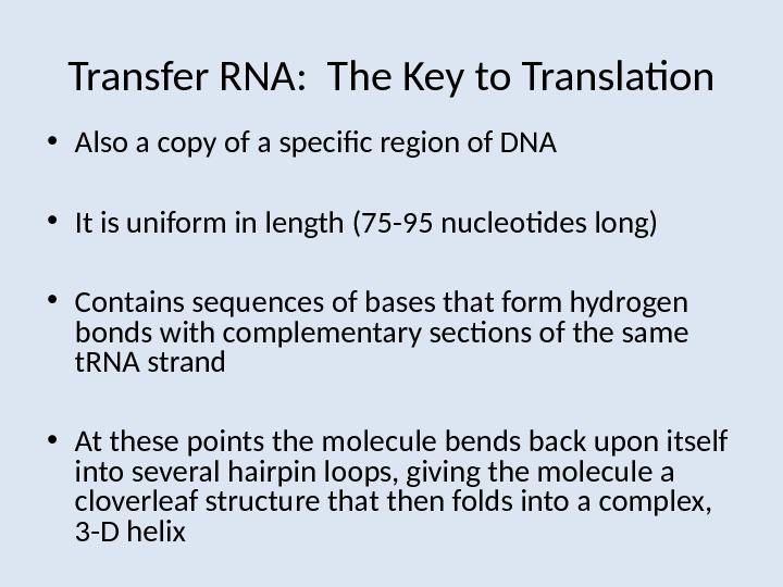 Transfer RNA:  The Key to Translation • Also a copy of a specific region of