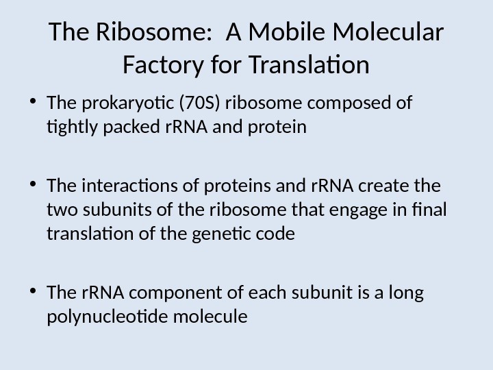 The Ribosome:  A Mobile Molecular Factory for Translation • The prokaryotic (70 S) ribosome composed