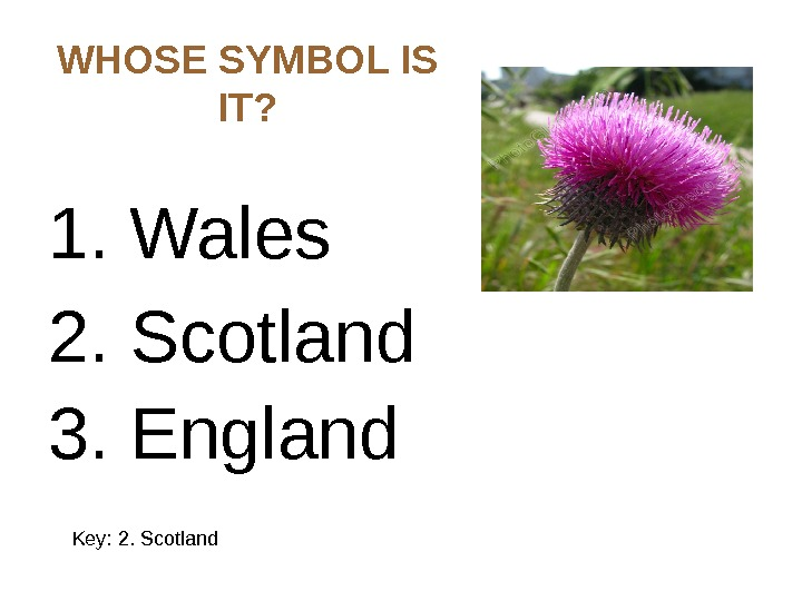WHOSE SYMBOL IS IT? 1. Wales 2. Scotland 3. England  Key: 2. Scotland