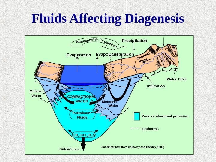 Fluids Affecting Diagenesis Precipitation Subsidence CH 4 , CO 2 , H 2 SPetroleum Fluids. Meteoric