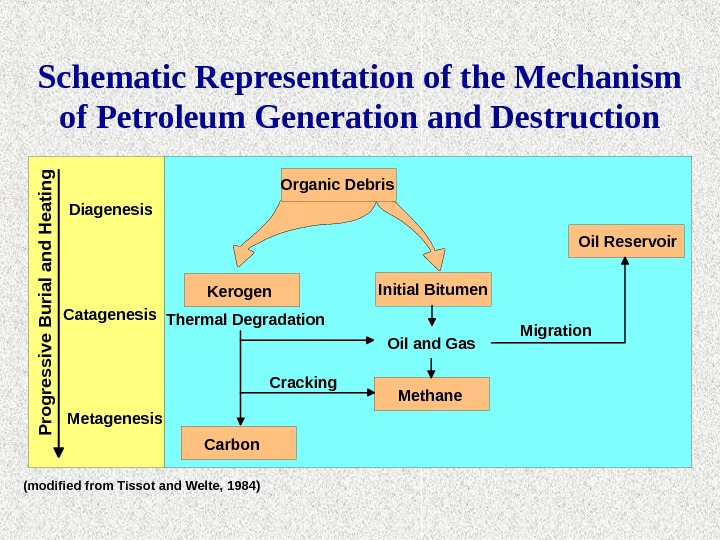 Schematic Representation of the Mechanism of Petroleum Generation and Destruction (modified from Tissot and Welte, 1984)