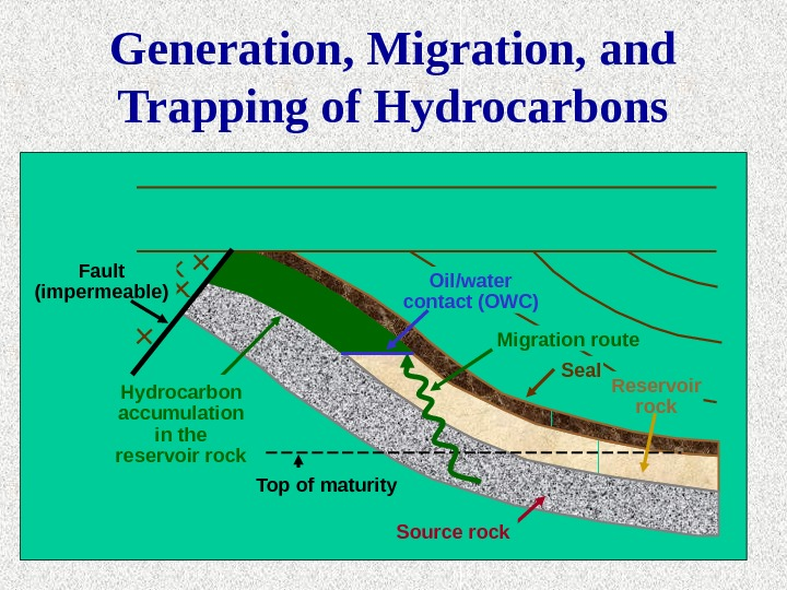 Reservoir rock. Seal. Migration route. Oil/water contact (OWC) Hydrocarbon accumulation in the reservoir rock Top of