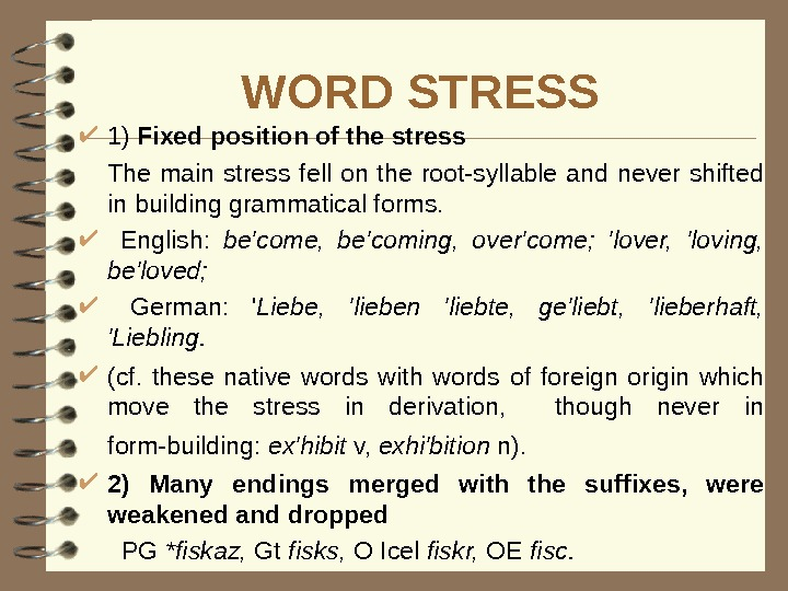 WORD STRESS 1) Fixed position of the stress The main stress fell on the