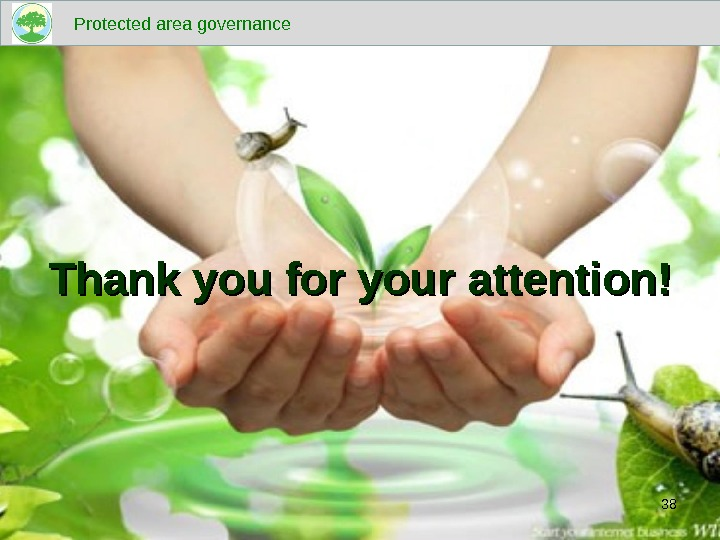 Thank you for your attention! Protected area governance 38