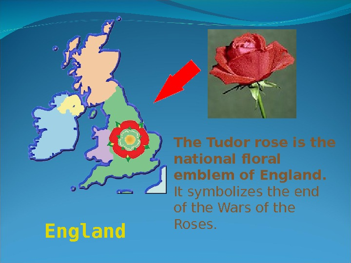 England  The Tudor rose is the national floral emblem of England.  It symbolizes the