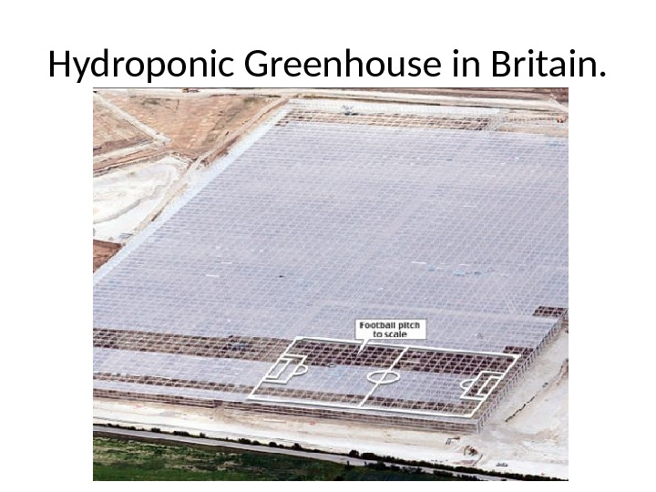 Hydroponic Greenhouse in Britain.