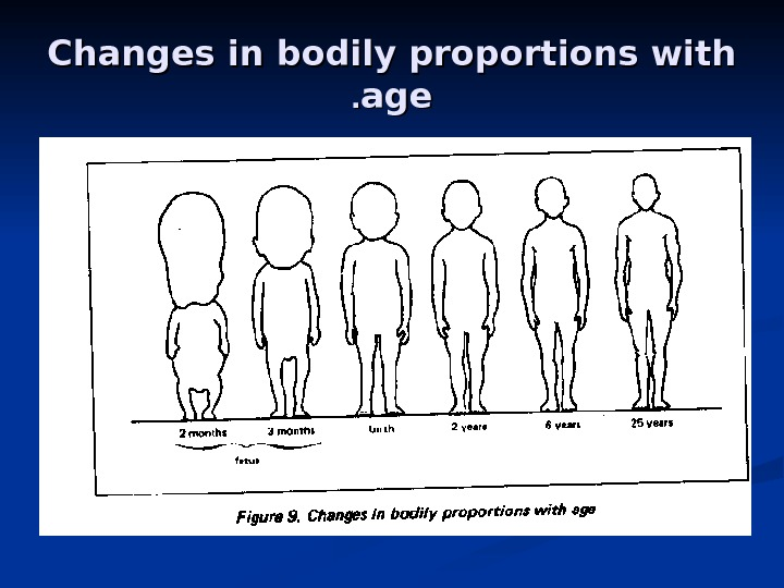 Changes in bodily proportions with ageage. .