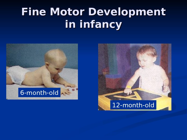 Fine Motor Development in infancy 6 -month-old 12 -month-old
