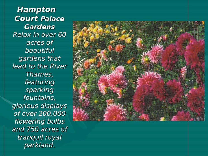 Hampton Court Palace Gardens Relax in over 60 acres of beautiful gardens that lead