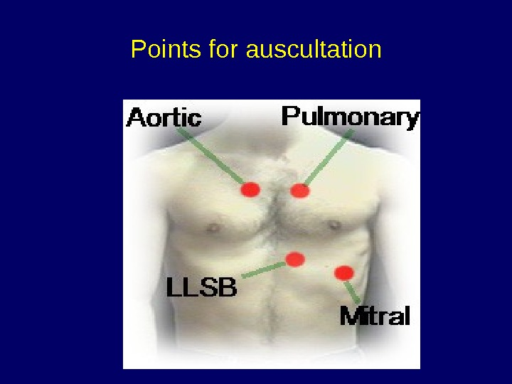 Points for auscultation
