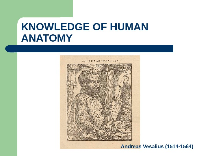 KNOWLEDGE OF HUMAN ANATOMY Andreas Vesalius (1514 -1564)