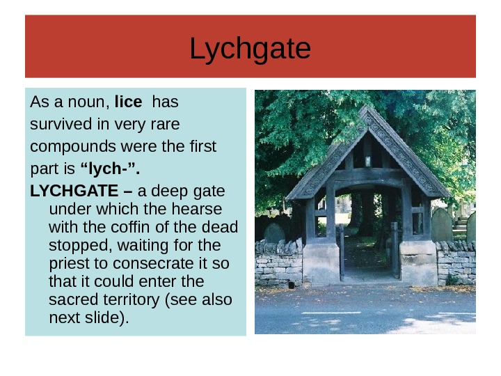 Lychgate As a noun,  lice  has survived in very rare compounds were