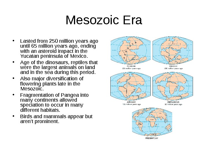 Mesozoic Era • Lasted from 250 million years ago until 65 million years ago,