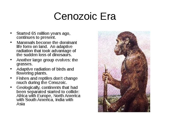 Cenozoic Era • Started 65 million years ago,  continues to present.  •
