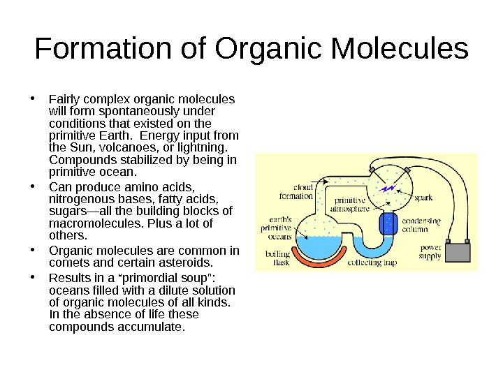 Formation of Organic Molecules • Fairly complex organic molecules will form spontaneously under conditions