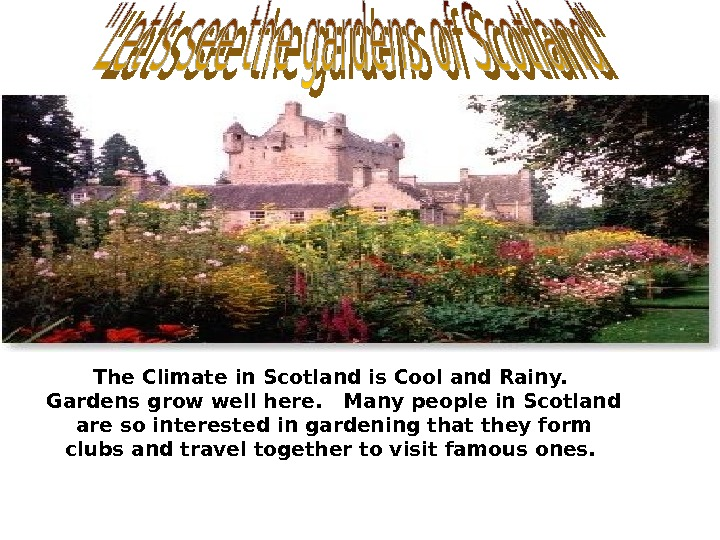 The Climate in Scotland is Cool and Rainy.  Gardens grow well here.  Many people