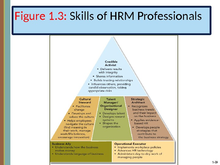 1 - 29 Figure 1. 3:  Skills of HRM Professionals