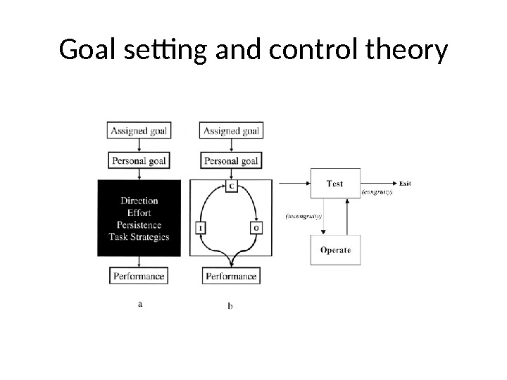 Goal setting and control theory
