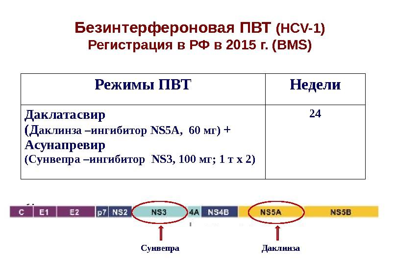 Безинтерфероновая ПВТ ( HCV-1) Регистрация в РФ в 2015 г. (BMS) Режимы ПВТ Недели Даклатасвир (Д