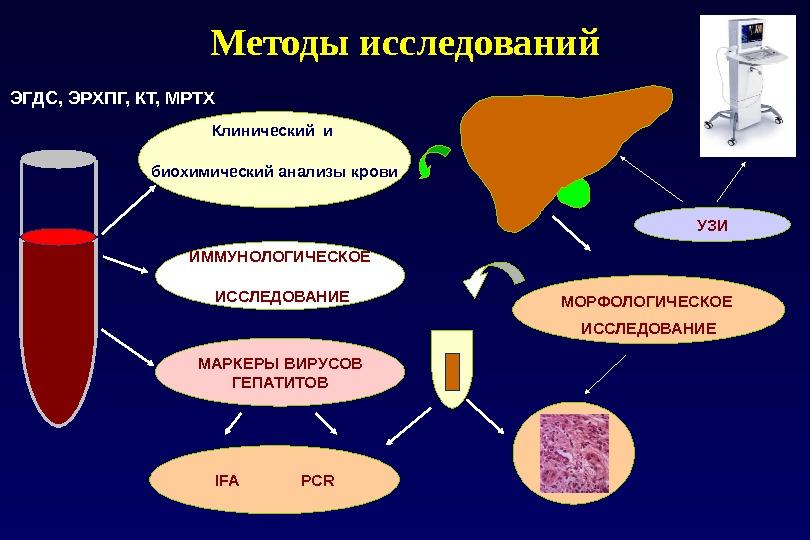 Методы исследований Клинический и биохимический анализы крови МОРФОЛОГИЧЕСКОЕ ИССЛЕДОВАНИЕИММУНОЛОГИЧЕСКОЕ  ИССЛЕДОВАНИЕ МАРКЕРЫ ВИРУСОВ ГЕПАТИТОВ IFA
