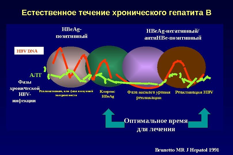 Естественное течение хронического гепатита В HBe. Ag- позитивный HBe. Ag-негативный/ анти. HBe-позитивный Фазы хронической HBV- инфекции