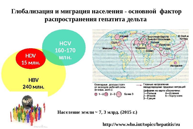 HBV 240  млн. HDV 15 млн. HCV 160-170 млн. http: //www. who. int/topics/hepatitis/ru. Население земли