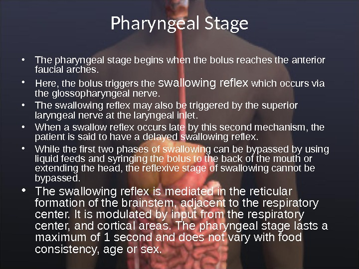 Pharyngeal Stage • The pharyngeal stage begins when the bolus reaches the anterior faucial arches.