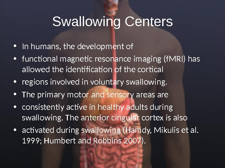 Swallowing Centers • In humans, the development of • functional magnetic resonance imaging (f. MRI) has