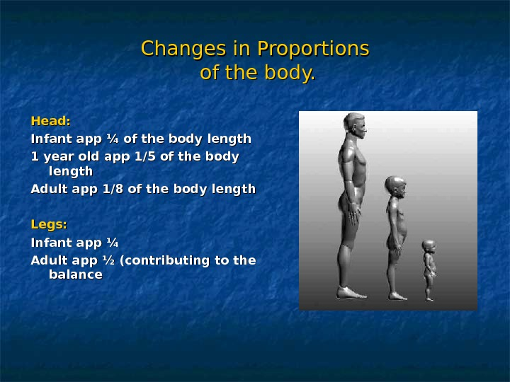 Changes in Proportions of the body. Head: Infant app ¼ of the body length 1 year